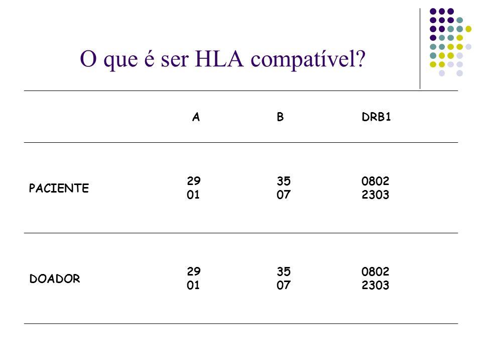 O que é ser HLA compatível? ABDRB1 PACIENTE 29 01 35 07 0802 2303 DOADOR 29 01 35 07 0802 2303