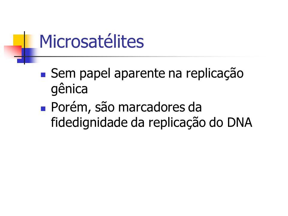 Microsatélites Sem papel aparente na replicação gênica Porém, são marcadores da fidedignidade da replicação do DNA