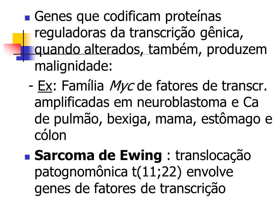 Genes que codificam proteínas reguladoras da transcrição gênica, quando alterados, também, produzem malignidade: - Ex: Família Myc de fatores de trans
