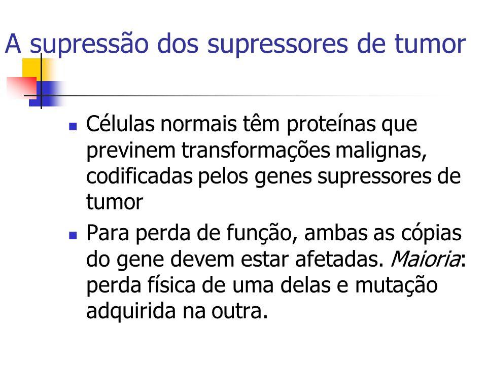 A supressão dos supressores de tumor Células normais têm proteínas que previnem transformações malignas, codificadas pelos genes supressores de tumor