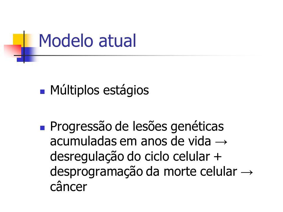 Modelo atual Múltiplos estágios Progressão de lesões genéticas acumuladas em anos de vida desregulação do ciclo celular + desprogramação da morte celu