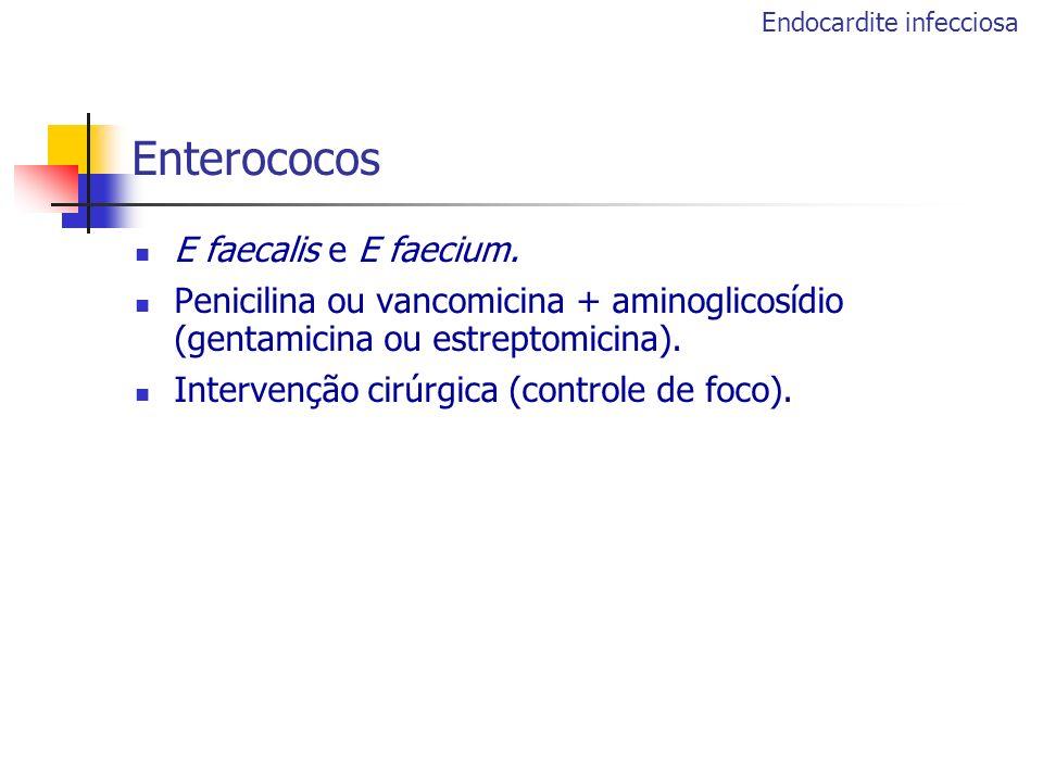 Enterococos E faecalis e E faecium. Penicilina ou vancomicina + aminoglicosídio (gentamicina ou estreptomicina). Intervenção cirúrgica (controle de fo