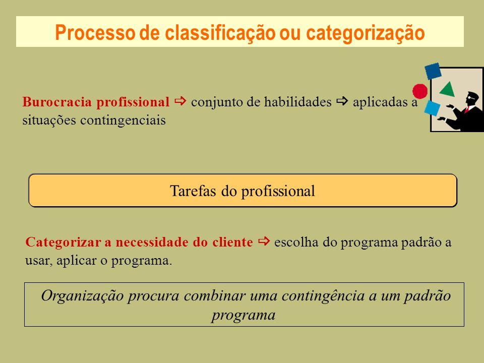 Processo de classificação ou categorização Tarefas do profissional Burocracia profissional conjunto de habilidades aplicadas a situações contingenciai
