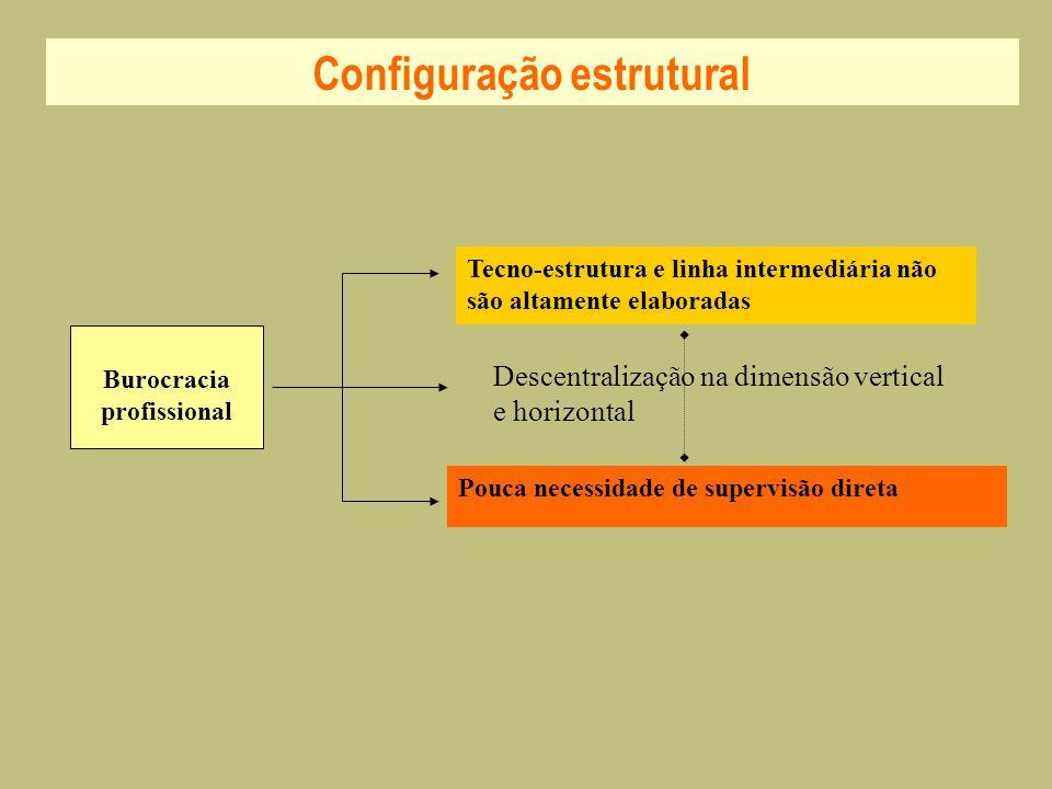 Burocracia profissional Tecno-estrutura e linha intermediária não são altamente elaboradas Pouca necessidade de supervisão direta Descentralização na