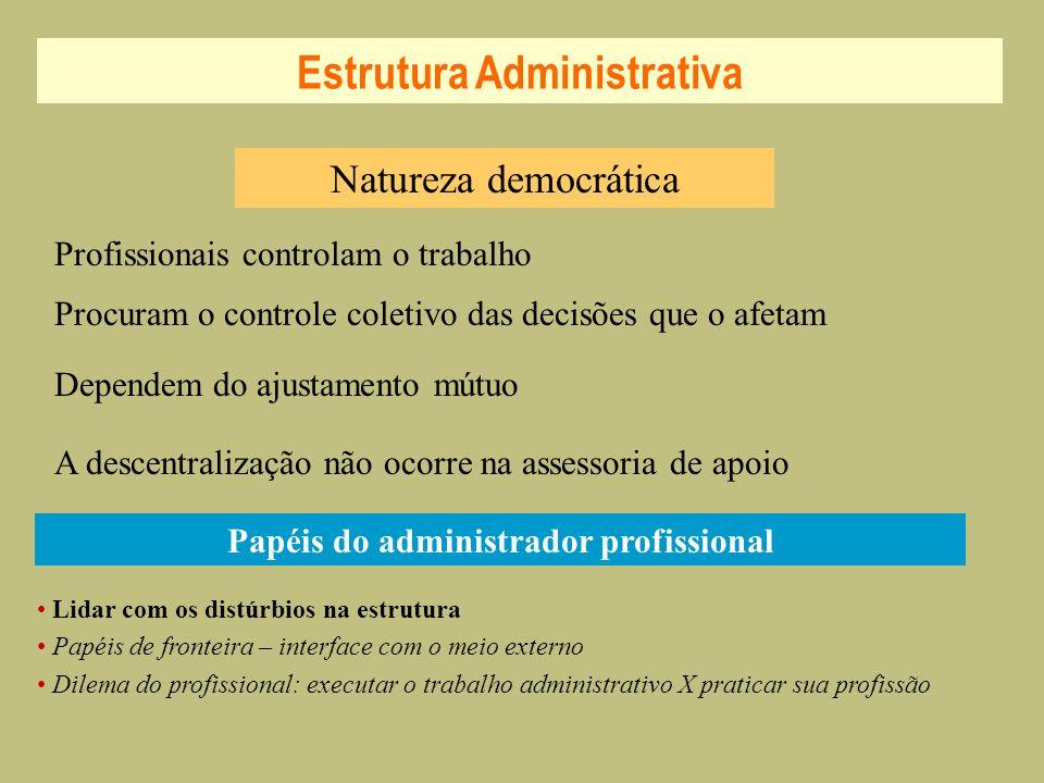 Natureza democrática Lidar com os distúrbios na estrutura Papéis de fronteira – interface com o meio externo Dilema do profissional: executar o trabal