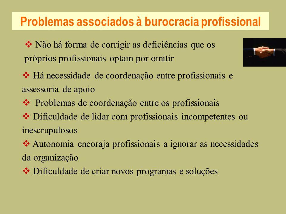 Problemas associados à burocracia profissional Há necessidade de coordenação entre profissionais e assessoria de apoio Problemas de coordenação entre