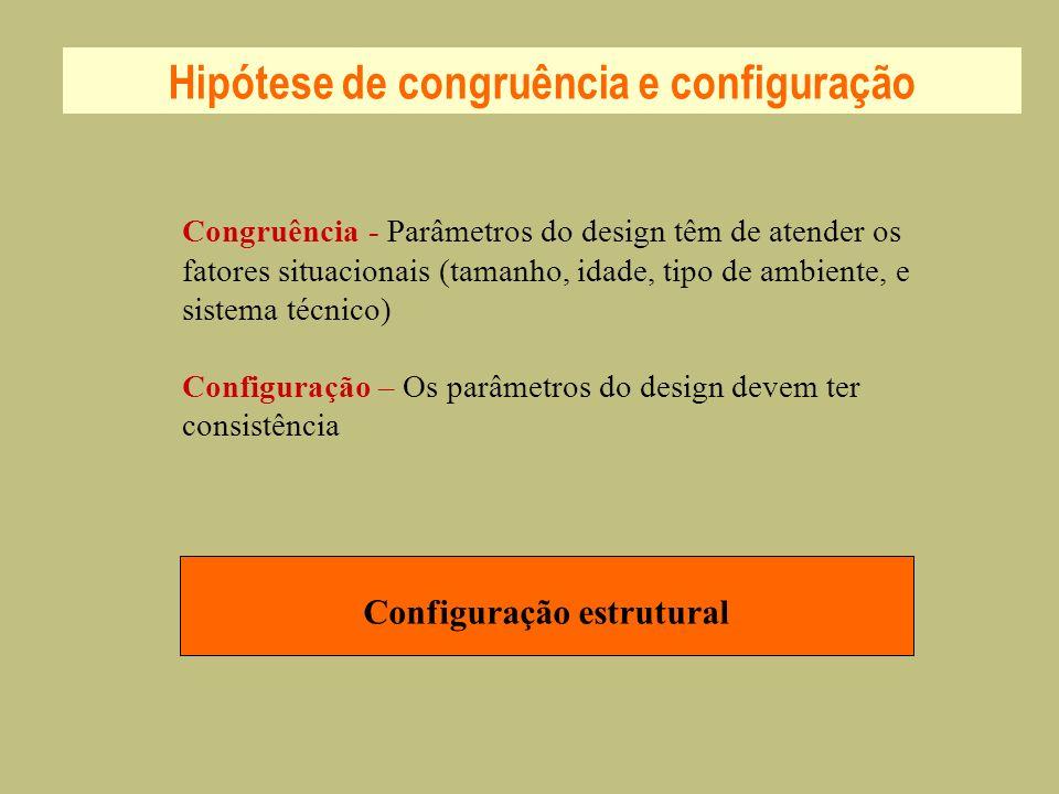 Configuração estrutural Hipótese de congruência e configuração Congruência - Parâmetros do design têm de atender os fatores situacionais (tamanho, ida