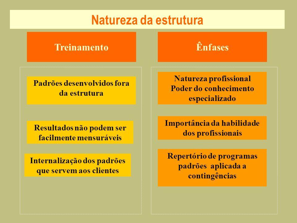 Natureza da estrutura TreinamentoÊnfases Internalização dos padrões que servem aos clientes Padrões desenvolvidos fora da estrutura Natureza profissio