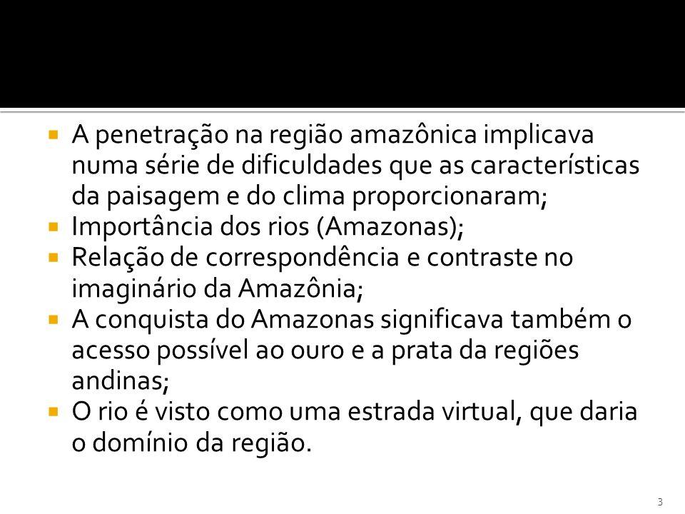 A penetração na região amazônica implicava numa série de dificuldades que as características da paisagem e do clima proporcionaram; Importância dos ri