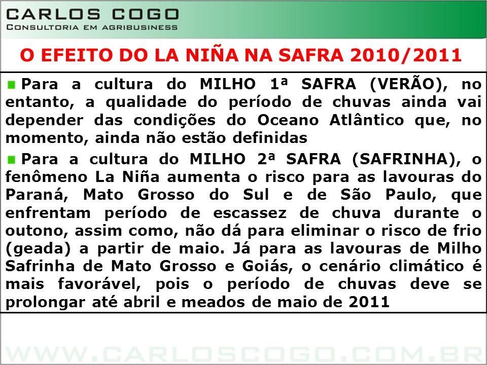12 Para a cultura do MILHO 1ª SAFRA (VERÃO), no entanto, a qualidade do período de chuvas ainda vai depender das condições do Oceano Atlântico que, no