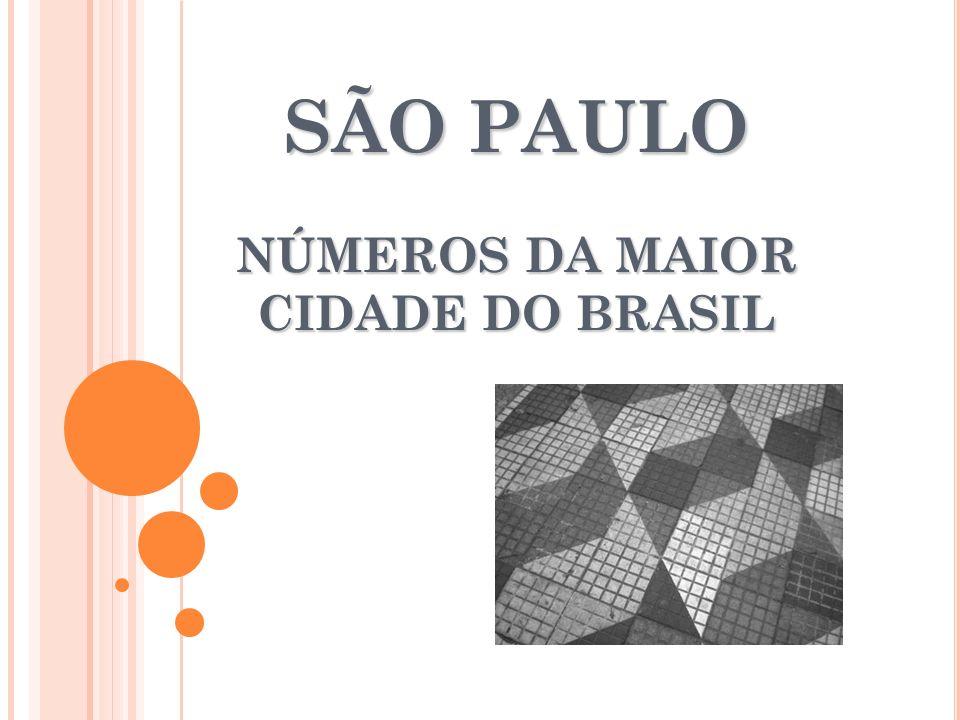 SÃO PAULO NÚMEROS DA MAIOR CIDADE DO BRASIL