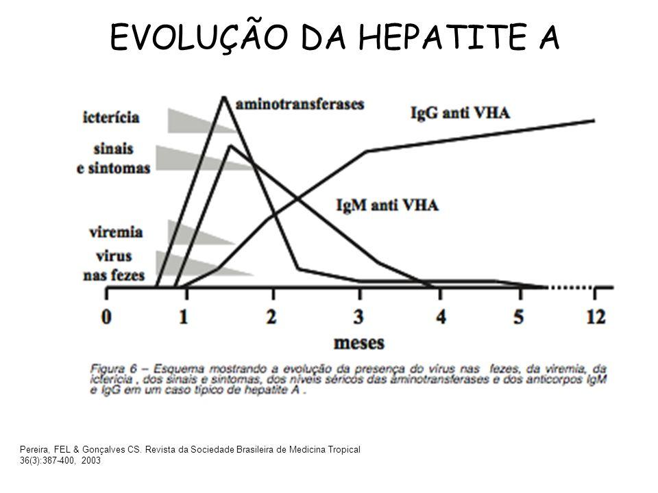 EVOLUÇÃO DA HEPATITE A Pereira, FEL & Gonçalves CS. Revista da Sociedade Brasileira de Medicina Tropical 36(3):387-400, 2003