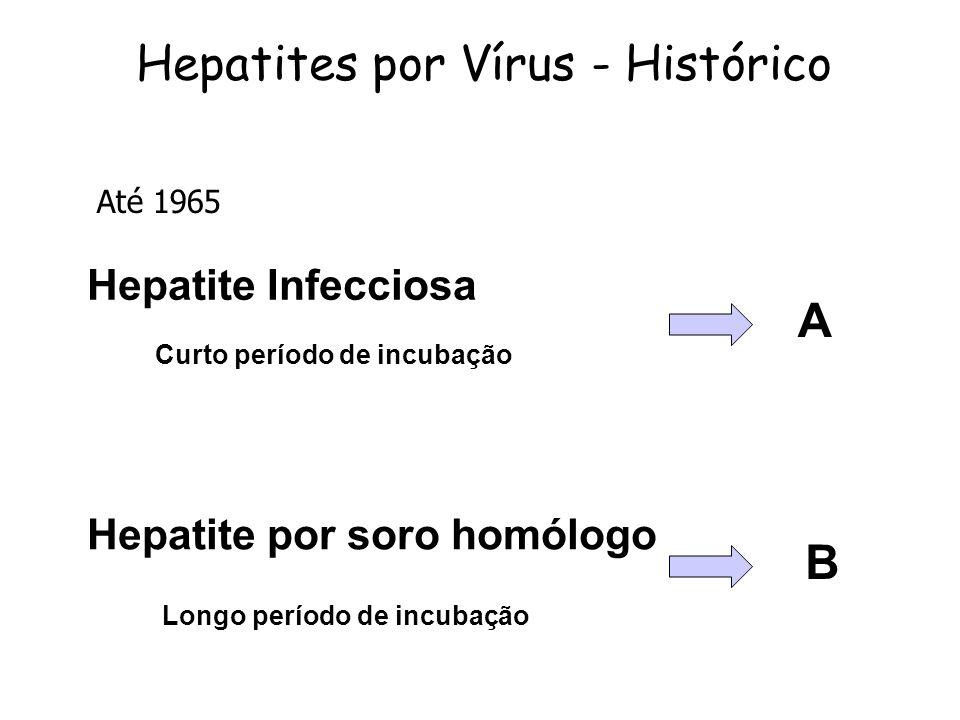Hepatites por Vírus - Histórico Hepatite Infecciosa Hepatite por soro homólogo Curto período de incubação Longo período de incubação A B Até 1965