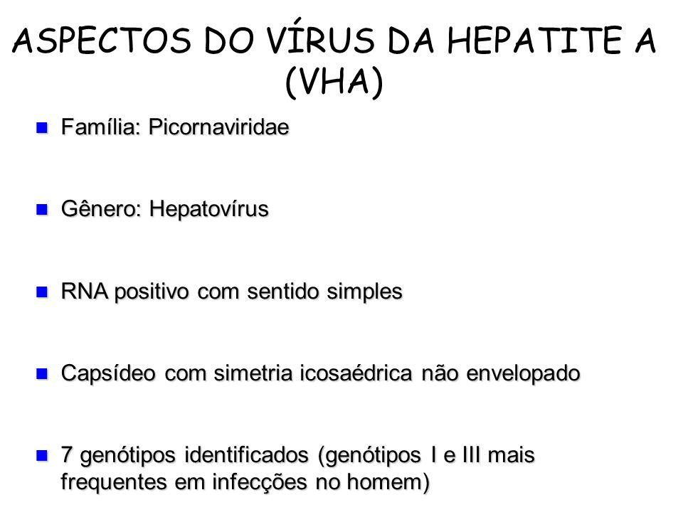Família: Picornaviridae Família: Picornaviridae Gênero: Hepatovírus Gênero: Hepatovírus RNA positivo com sentido simples RNA positivo com sentido simp
