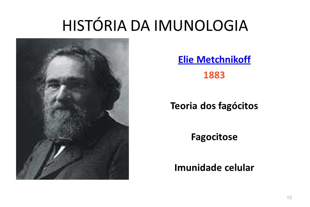 HISTÓRIA DA IMUNOLOGIA Elie Metchnikoff 1883 Teoria dos fagócitos Fagocitose Imunidade celular 10