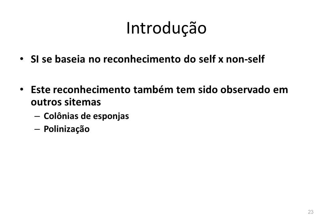 Introdução SI se baseia no reconhecimento do self x non-self Este reconhecimento também tem sido observado em outros sitemas – Colônias de esponjas –
