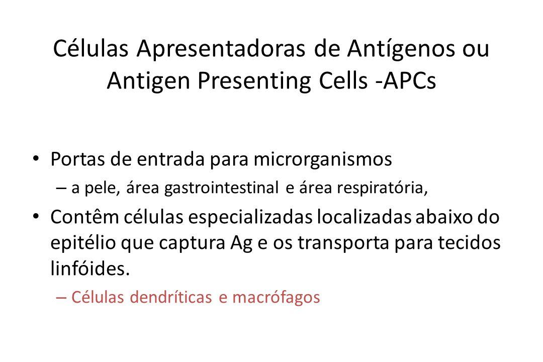 Células Apresentadoras de Antígenos ou Antigen Presenting Cells -APCs Portas de entrada para microrganismos – a pele, área gastrointestinal e área res