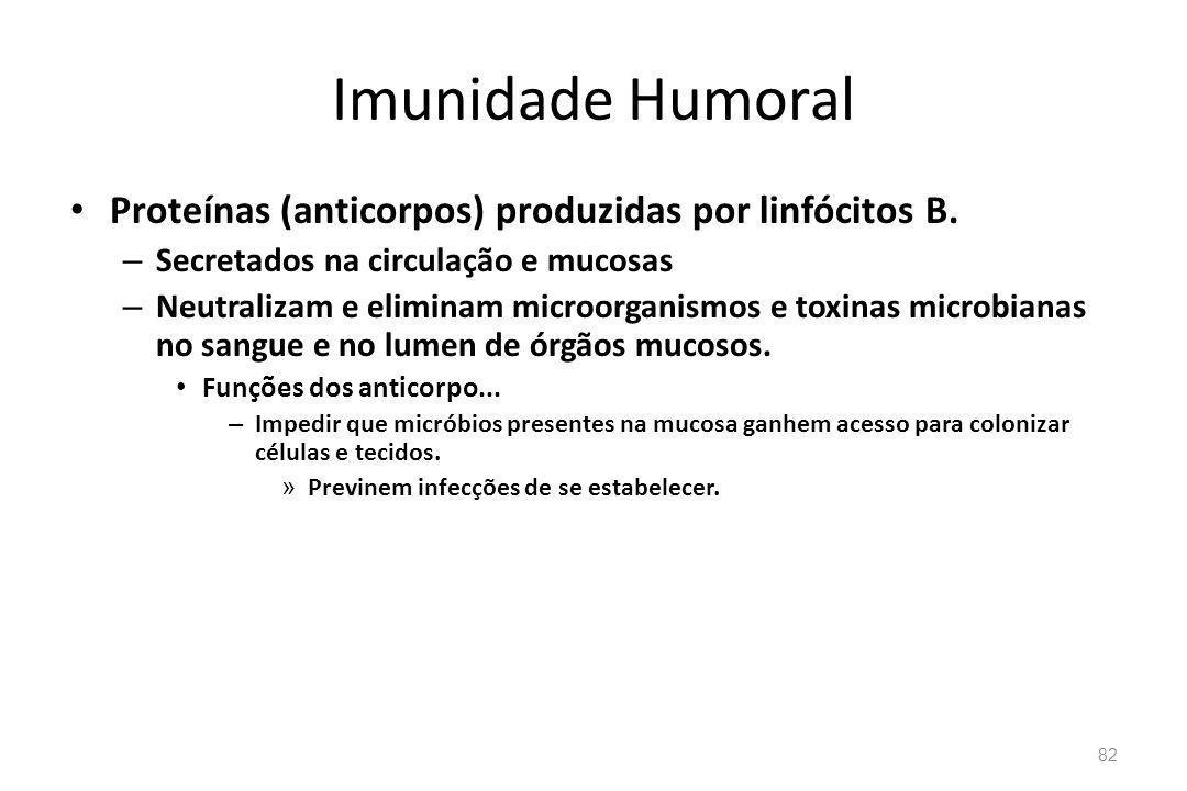 Imunidade Humoral Proteínas (anticorpos) produzidas por linfócitos B. – Secretados na circulação e mucosas – Neutralizam e eliminam microorganismos e