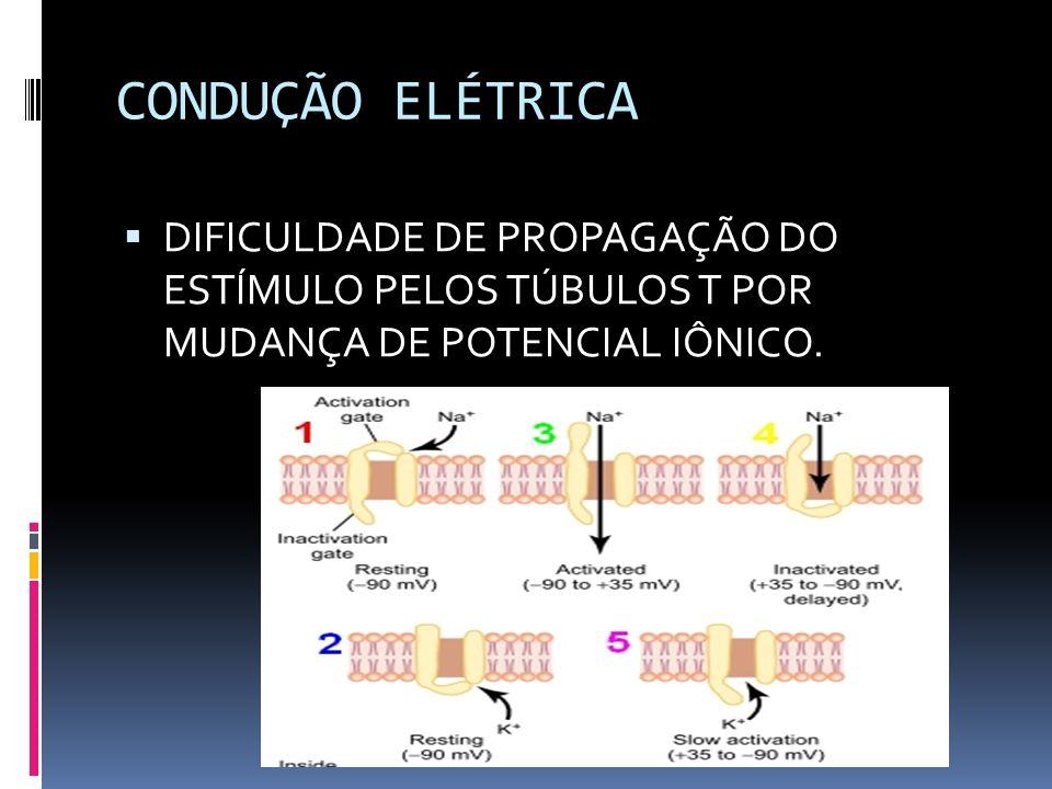 DEFICIÊNCIA NA LIBERAÇÃO DE CÁLCIO MECANISMOS PROPOSTOS: A) QUEDA DO PH- INIBE LIBERAÇÃO DO CÁLCIO NO PELO RETICULO SARCOPLÁSMATICO, INTERFERINDO NA FIXAÇÃO DO CÁLCIO A TROPONINA.