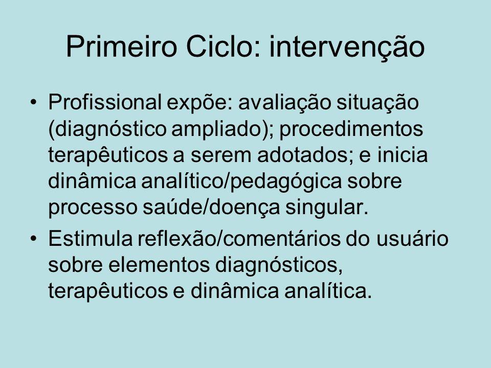 Primeiro Ciclo: intervenção Profissional expõe: avaliação situação (diagnóstico ampliado); procedimentos terapêuticos a serem adotados; e inicia dinâmica analítico/pedagógica sobre processo saúde/doença singular.