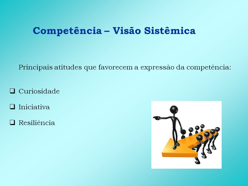 Competência – Visão Sistêmica Principais comportamentos de entrega: Estuda o papel de todas as áreas da empresa Organiza dados que facilitem a tomada de decisão Analisa as conseqüências de uma decisão em todas as áreas