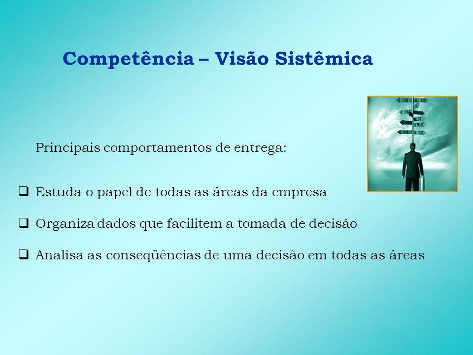Competência – Visão Sistêmica Principais comportamentos de entrega: Estuda o papel de todas as áreas da empresa Organiza dados que facilitem a tomada