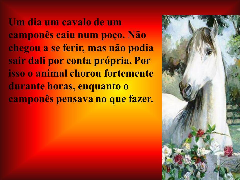 Um dia um cavalo de um camponês caiu num poço. Não chegou a se ferir, mas não podia sair dali por conta própria. Por isso o animal chorou fortemente d
