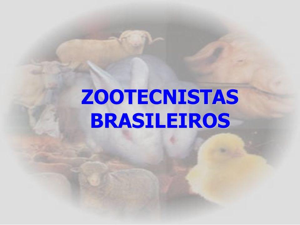 Considerações sobre as questões discursivas (CE) PREOCUPANTE: Conceitos técnicos simples e a correta utilização da língua portuguesa consistam em um o
