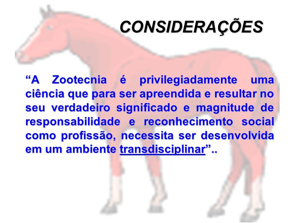 O perfil profissional considerado ideal é aquele que concentra no indivíduo: - características pessoais e de relacionamento interpessoal, - habilidade