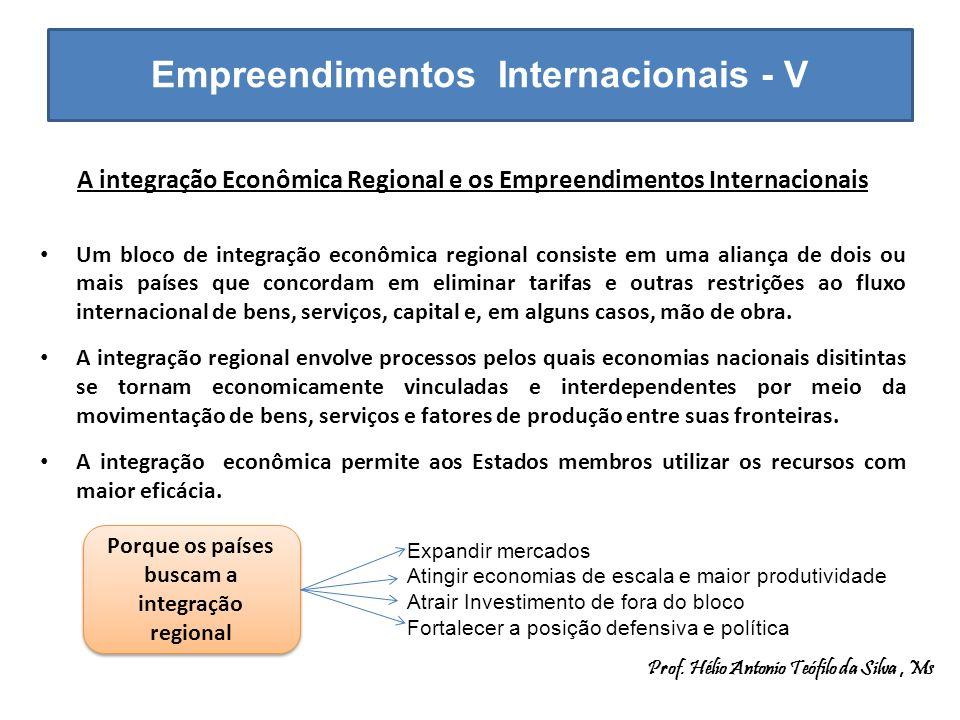 Empreendimentos Internacionais - V A integração Econômica Regional e os Empreendimentos Internacionais Um bloco de integração econômica regional consi