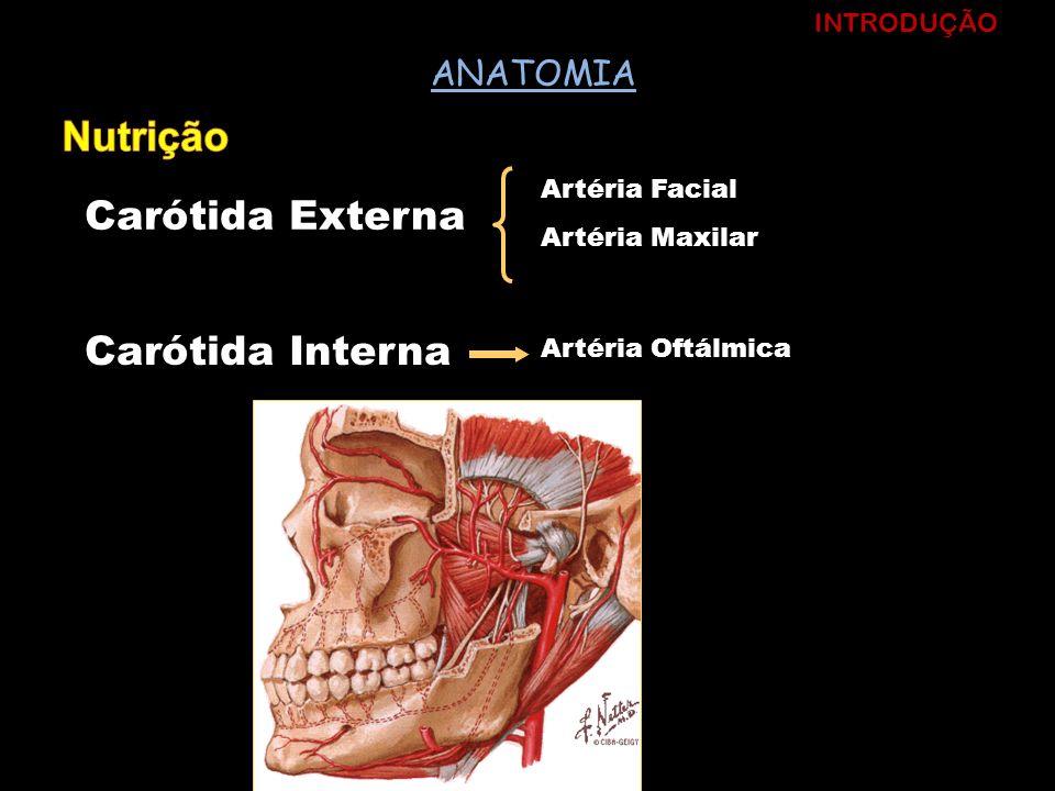 Carótida Externa Artéria Facial Artéria Maxilar Carótida Interna Artéria Oftálmica INTRODUÇÃO ANATOMIA