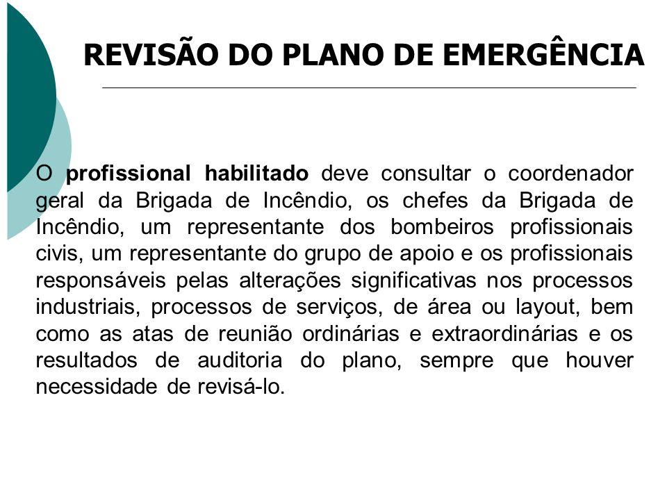 O profissional habilitado deve consultar o coordenador geral da Brigada de Incêndio, os chefes da Brigada de Incêndio, um representante dos bombeiros