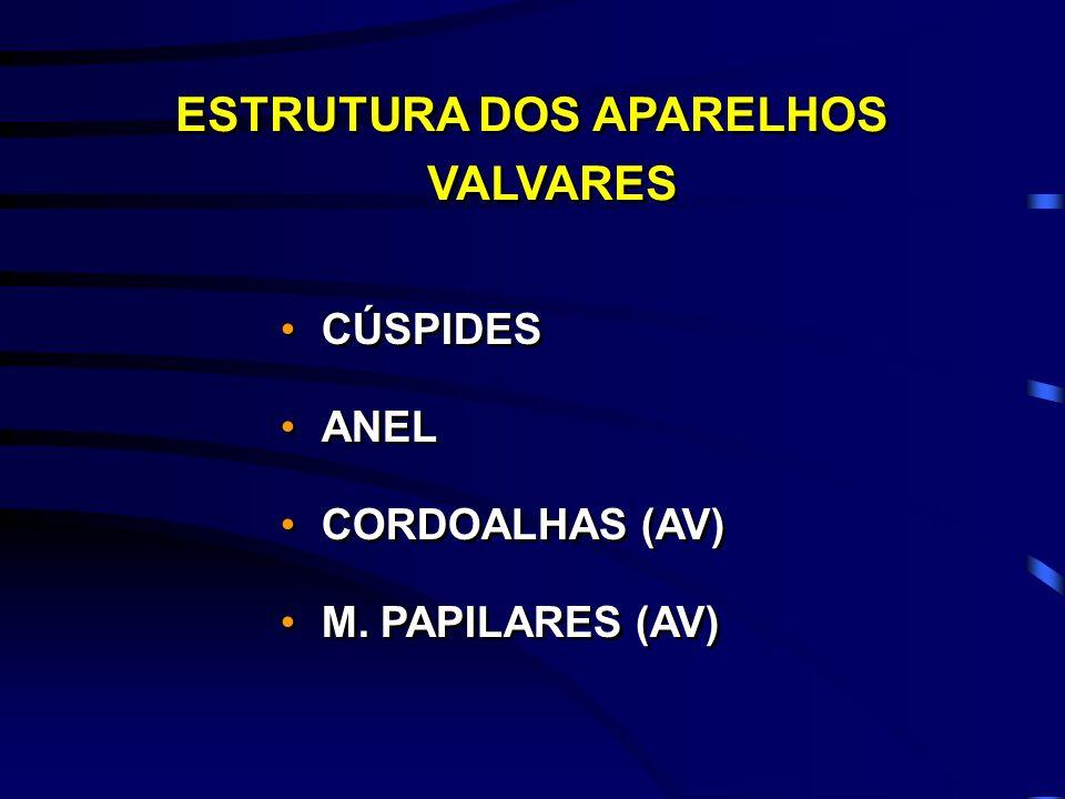 ESTRUTURA DOS APARELHOS VALVARES CÚSPIDES ANEL CORDOALHAS (AV) M. PAPILARES (AV) CÚSPIDES ANEL CORDOALHAS (AV) M. PAPILARES (AV)
