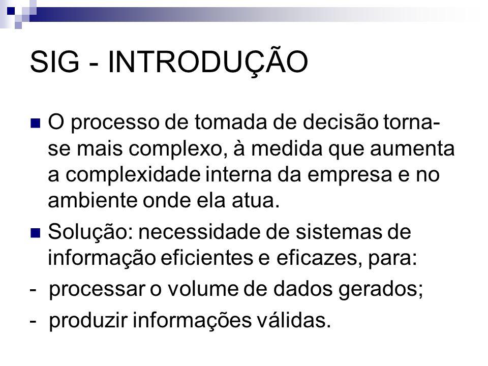 Sistema de Informação Gerencial - SIG Arquitetura de Informação: forma particular da tecnologia da informação adotada por uma organização para atingir determinados objetivos ou desempenhar determinadas funções.