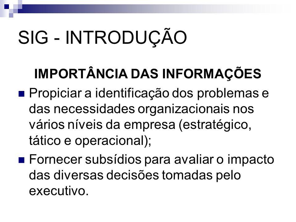 SIG - INTRODUÇÃO IMPORTÂNCIA DAS INFORMAÇÕES Propiciar a identificação dos problemas e das necessidades organizacionais nos vários níveis da empresa (