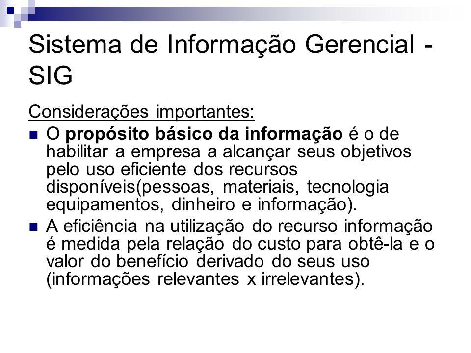 Sistema de Informação Gerencial - SIG Considerações importantes: O propósito básico da informação é o de habilitar a empresa a alcançar seus objetivos