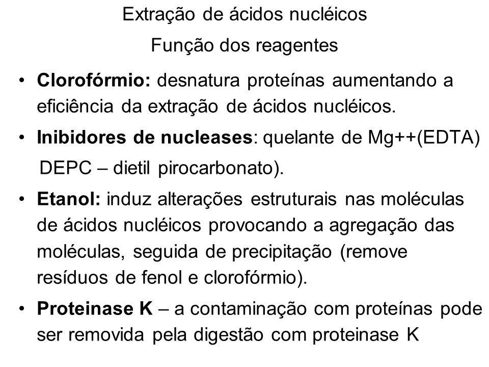 Extração de ácidos nucléicos Função dos reagentes Clorofórmio: desnatura proteínas aumentando a eficiência da extração de ácidos nucléicos. Inibidores