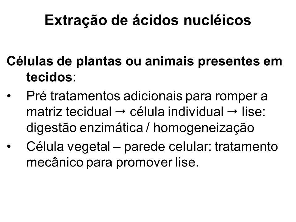 Extração de ácidos nucléicos Células de plantas ou animais presentes em tecidos: Pré tratamentos adicionais para romper a matriz tecidual célula indiv