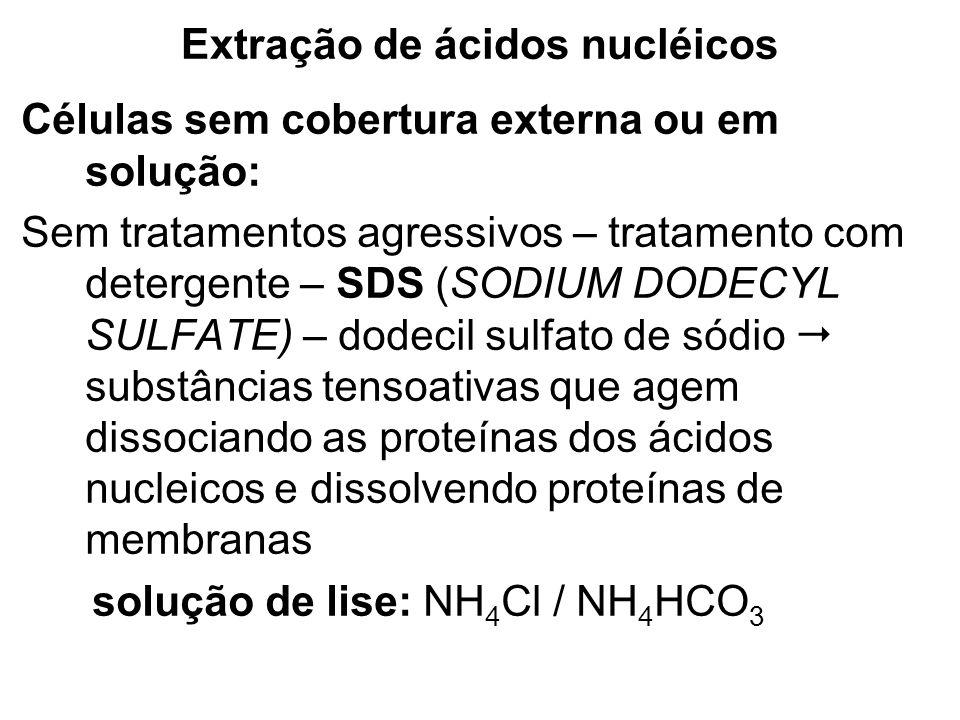 Extração de ácidos nucléicos Células sem cobertura externa ou em solução: Sem tratamentos agressivos – tratamento com detergente – SDS (SODIUM DODECYL
