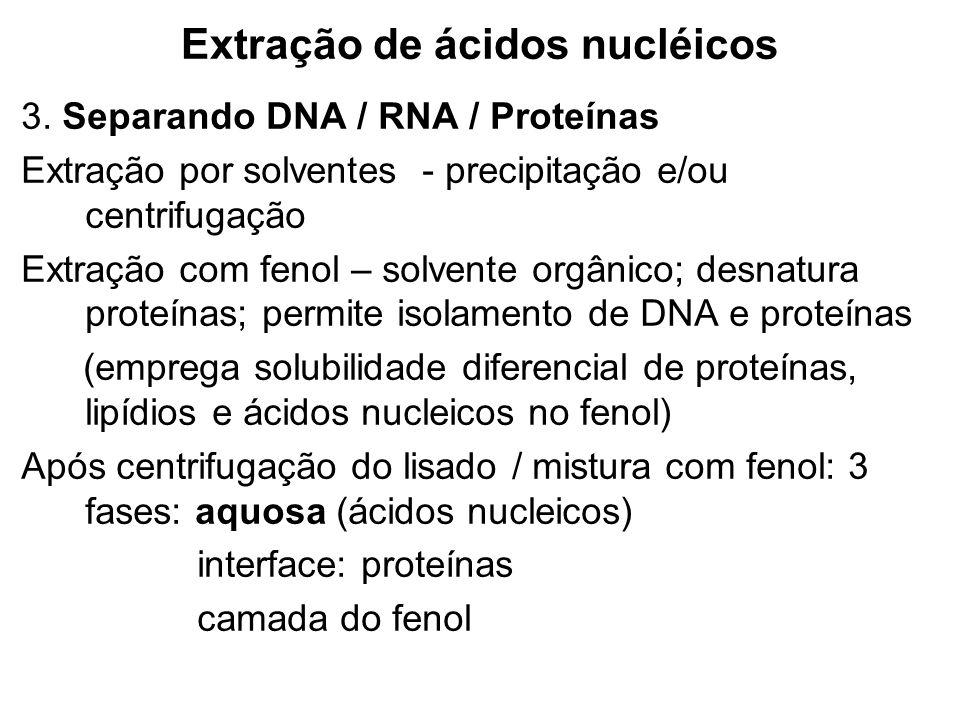 Extração de ácidos nucléicos 3. Separando DNA / RNA / Proteínas Extração por solventes - precipitação e/ou centrifugação Extração com fenol – solvente