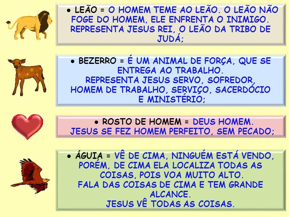 LEÃO = O HOMEM TEME AO LEÃO. O LEÃO NÃO FOGE DO HOMEM, ELE ENFRENTA O INIMIGO. REPRESENTA JESUS REI, O LEÃO DA TRIBO DE JUDÁ; BEZERRO = É UM ANIMAL DE