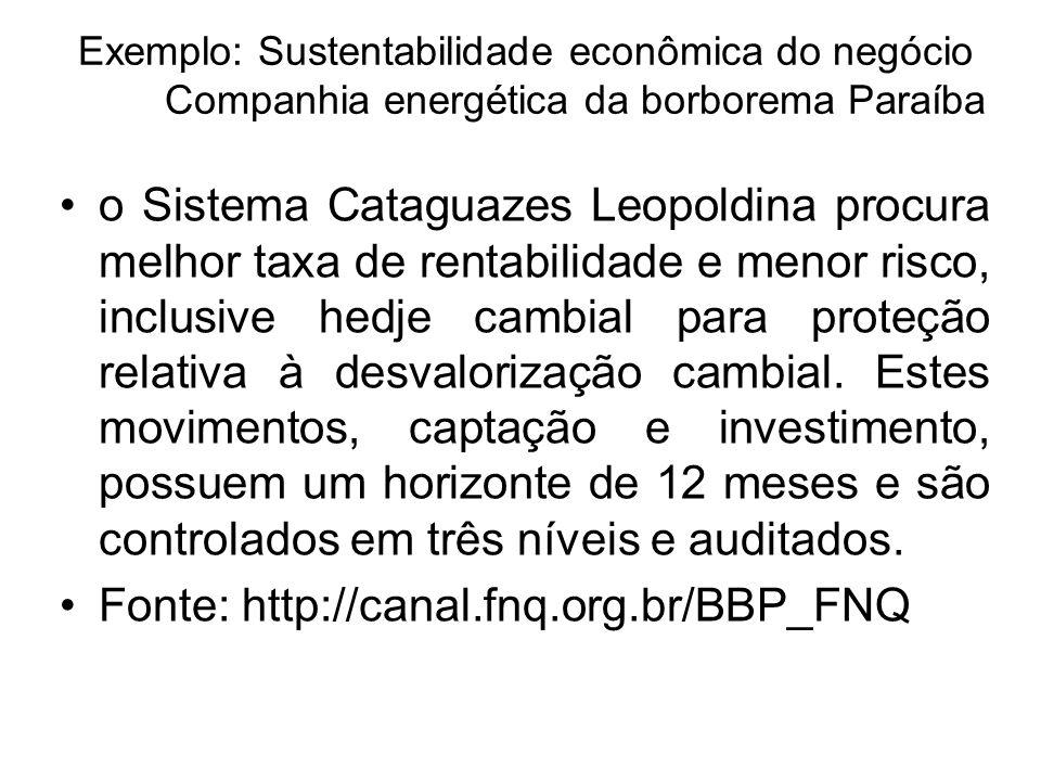 Exemplo: Sustentabilidade econômica do negócio Companhia energética da borborema Paraíba o Sistema Cataguazes Leopoldina procura melhor taxa de rentab