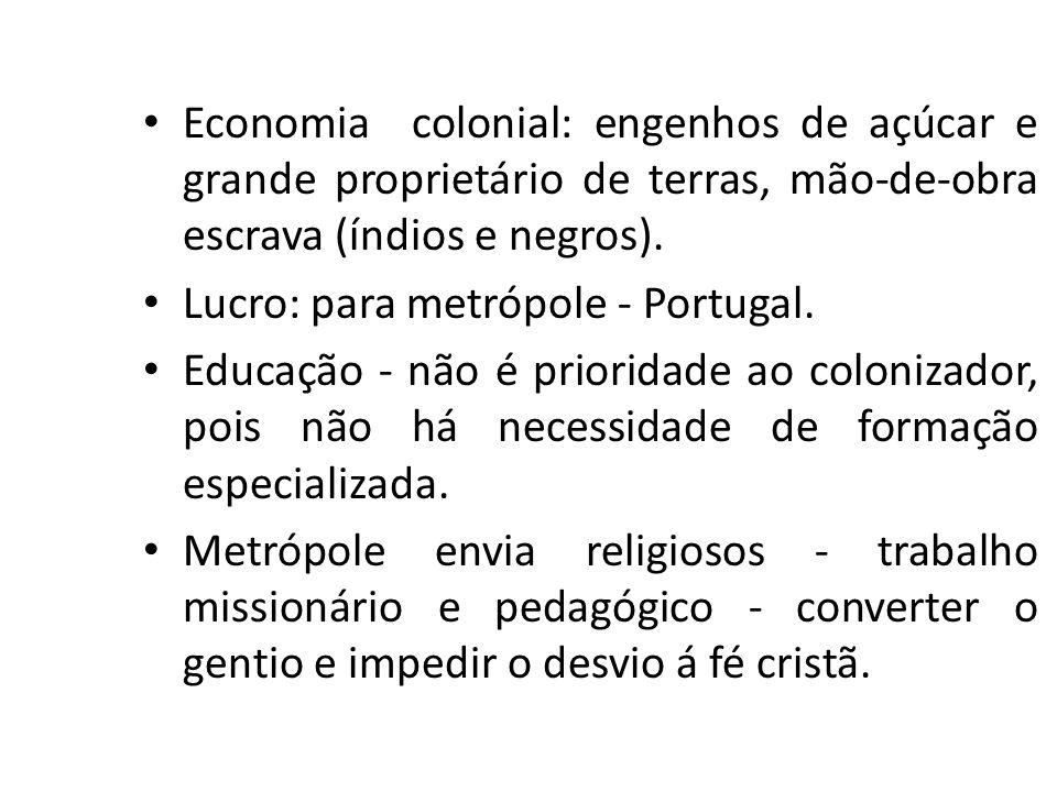 Economia colonial: engenhos de açúcar e grande proprietário de terras, mão-de-obra escrava (índios e negros). Lucro: para metrópole - Portugal. Educaç