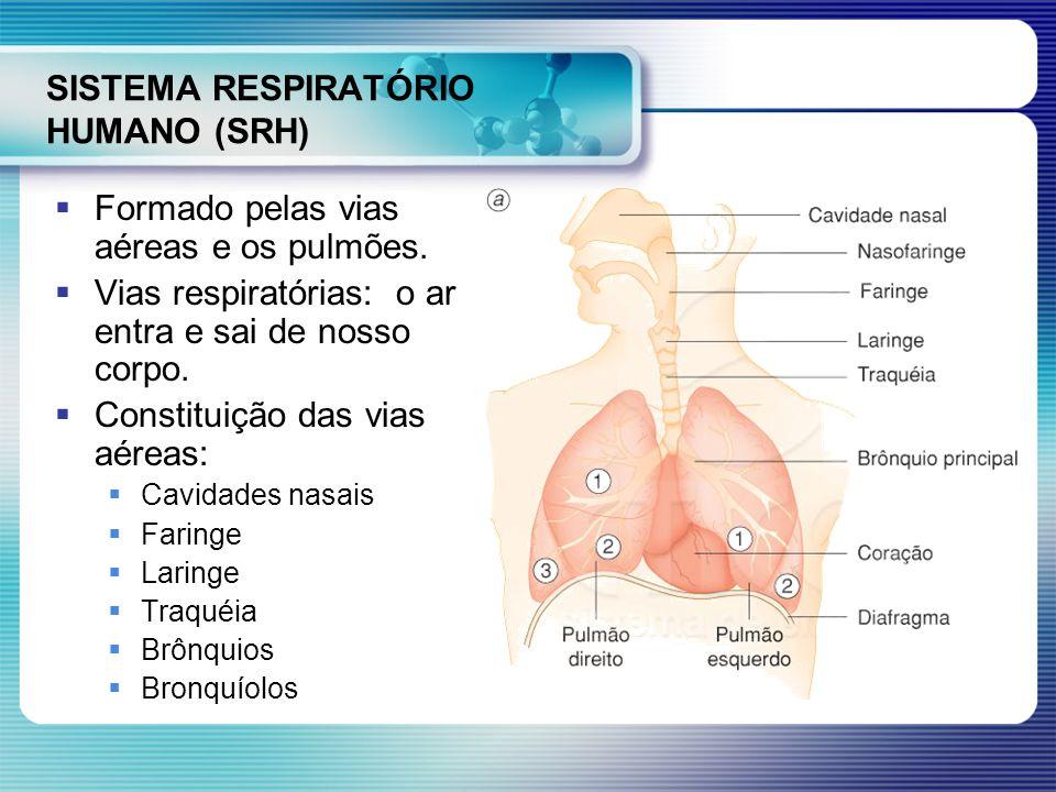 SISTEMA RESPIRATÓRIO HUMANO (SRH) Formado pelas vias aéreas e os pulmões. Vias respiratórias: o ar entra e sai de nosso corpo. Constituição das vias a