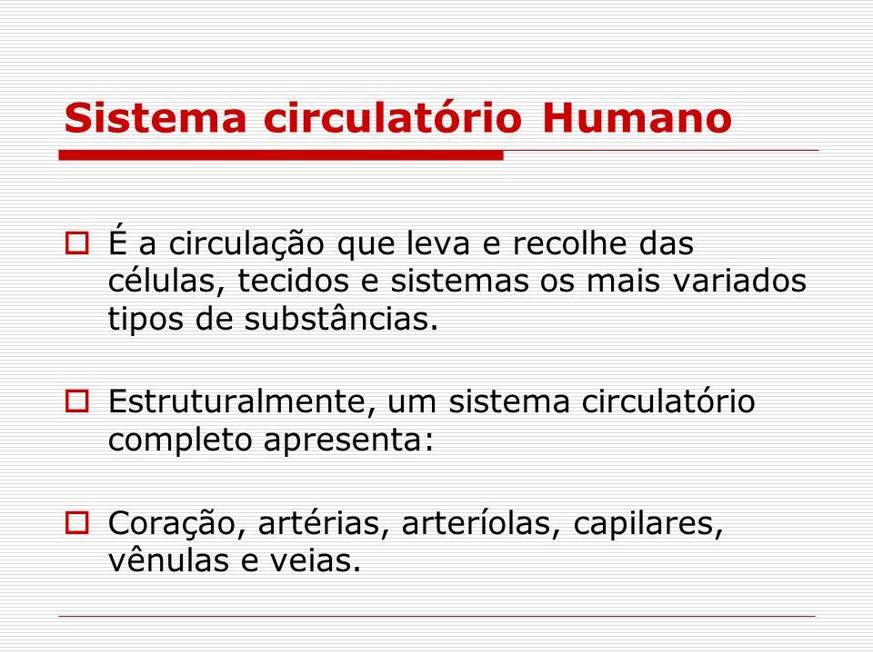 Sistema circulatório Humano É a circulação que leva e recolhe das células, tecidos e sistemas os mais variados tipos de substâncias. Estruturalmente,