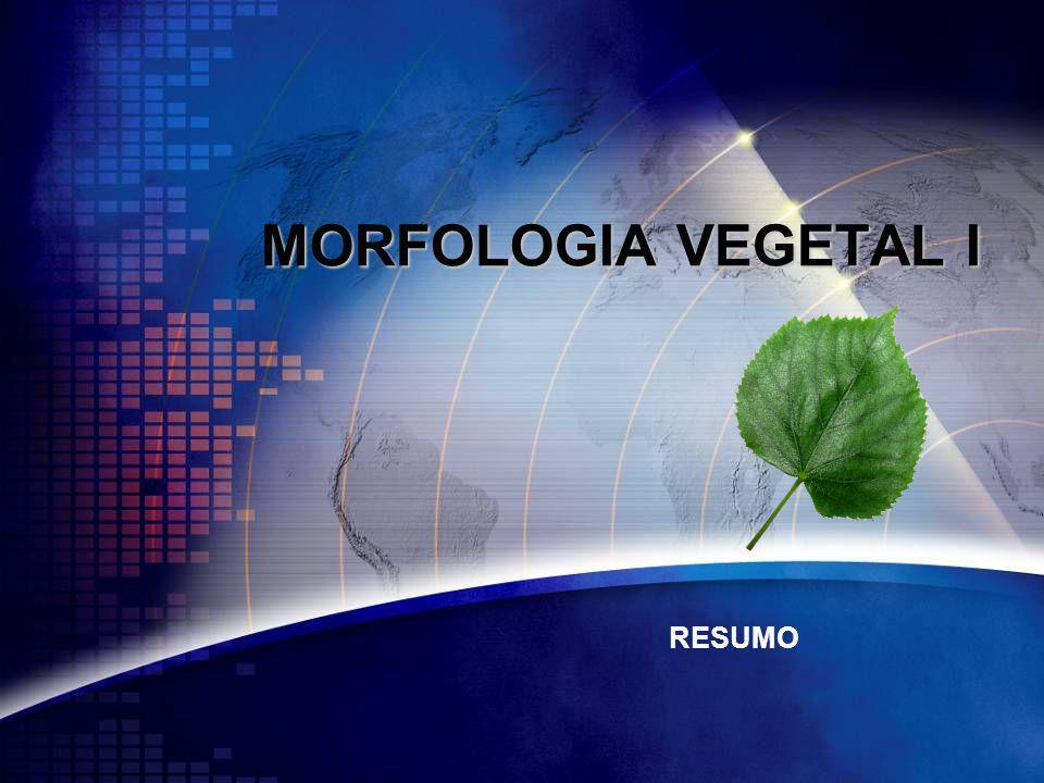 MORFOLOGIA VEGETAL I RESUMO
