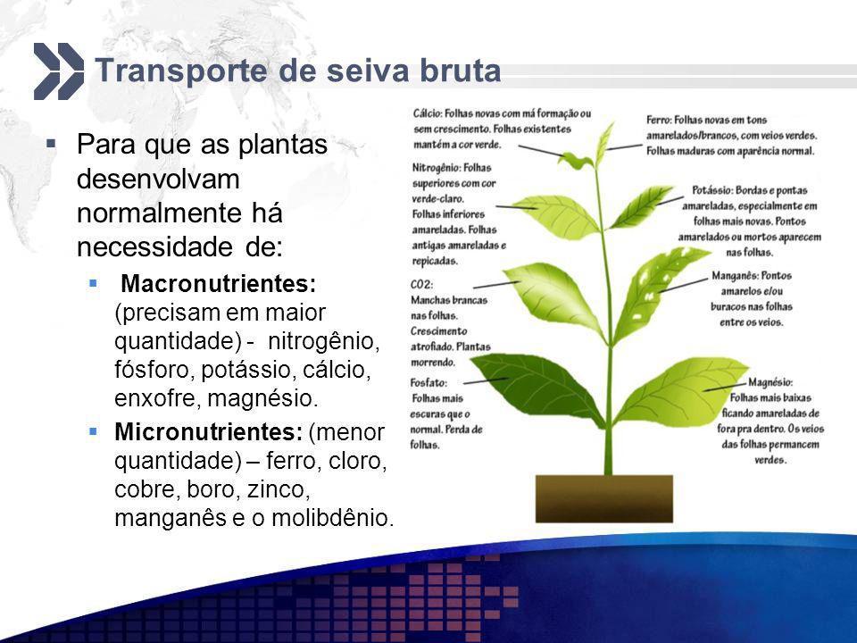 Transporte de seiva bruta Para que as plantas desenvolvam normalmente há necessidade de: Macronutrientes: (precisam em maior quantidade) - nitrogênio,