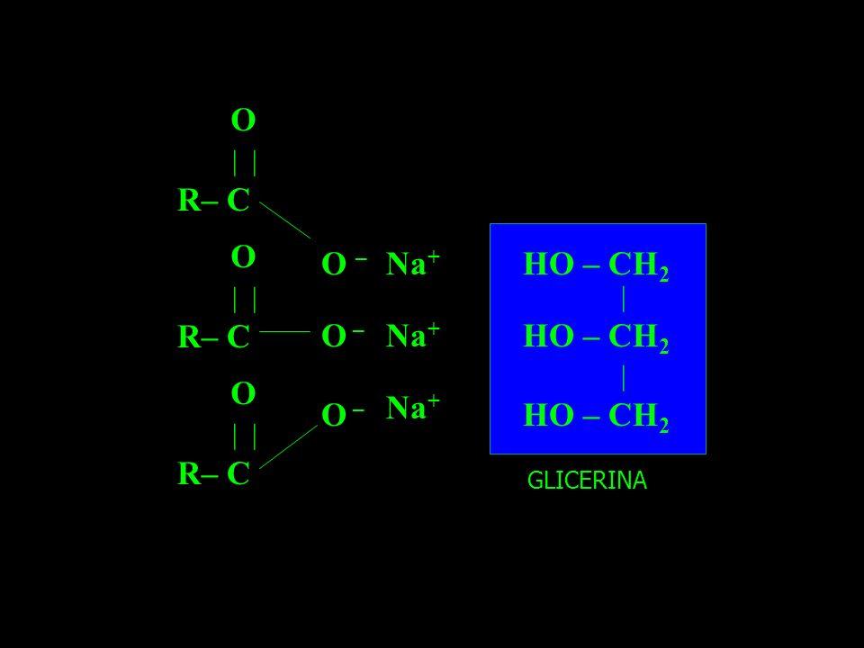 R– C | O R– C | O R– C | O O – Na + HO – CH 2 | | GLICERINA