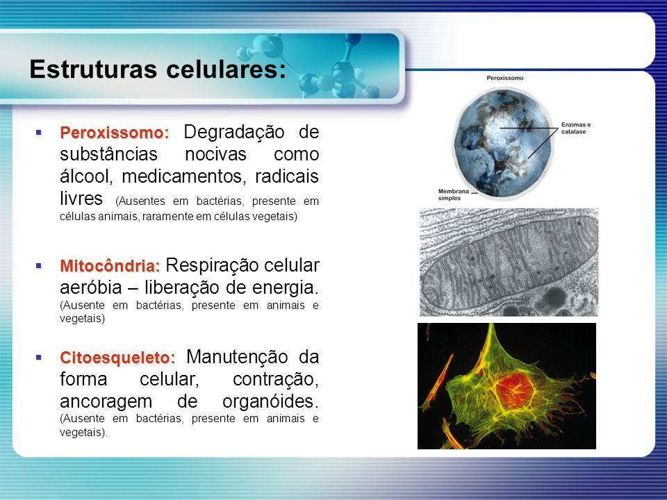 Estruturas celulares: Peroxissomo: Peroxissomo: Degradação de substâncias nocivas como álcool, medicamentos, radicais livres (Ausentes em bactérias, p