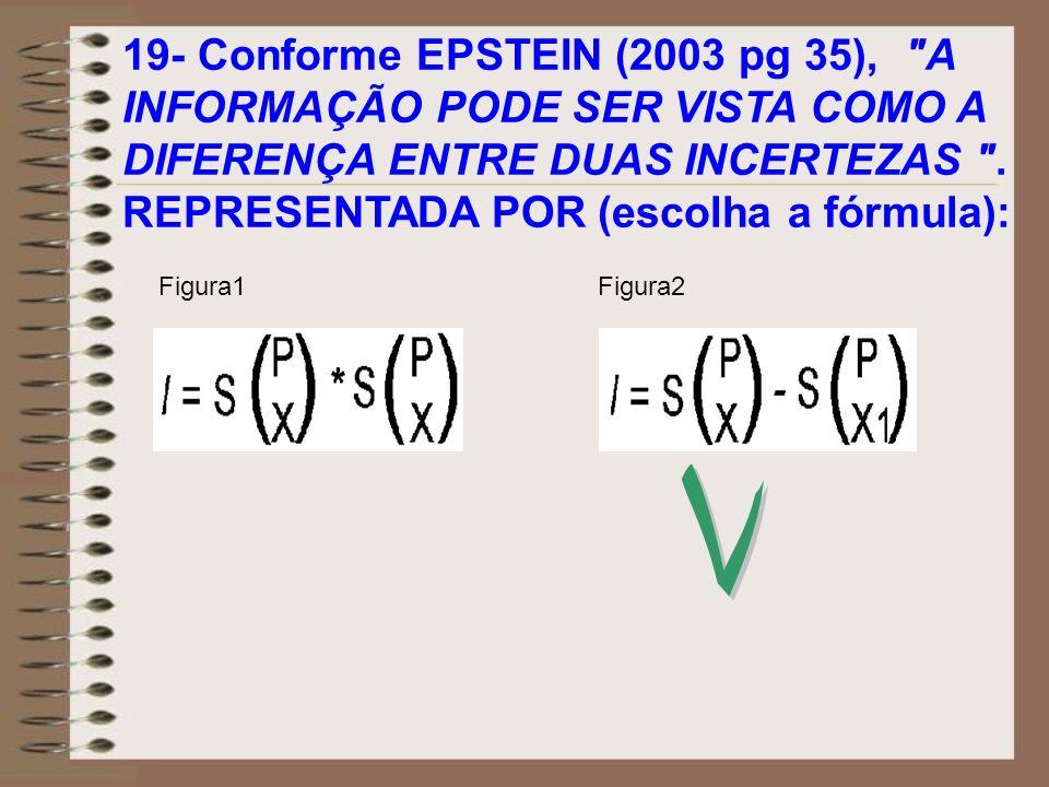 19- Conforme EPSTEIN (2003 pg 35),
